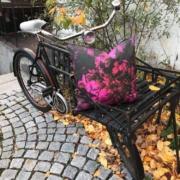 lyng pute på sykkel